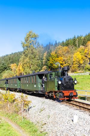 narrowgauge: steam train, Steinbach - Johstadt, Germany