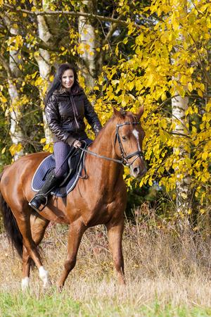 horseback riding: equestrian on horseback in autumnal nature