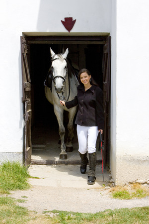 single whip: equestrian with horse in stable Stock Photo