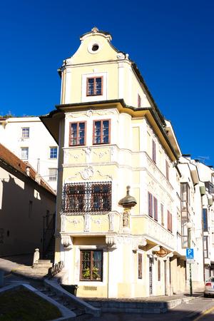 good shepherd: House of the good shepherd, Bratislava, Slovakia