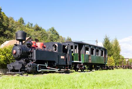 narrow gauge railroad: steam locomotive, Viglas, Slovakia