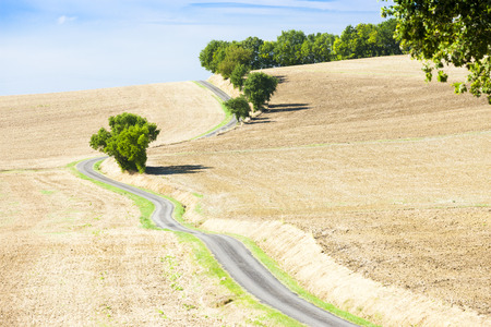 stillness: field with a road, Gers Department, France