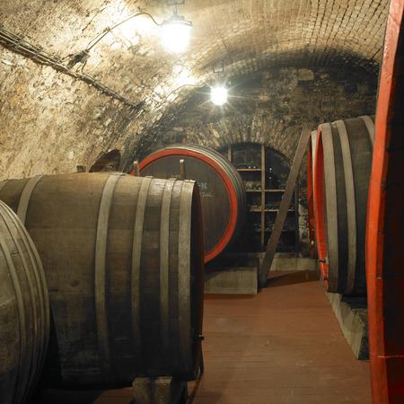 casks: wine cellar, Litomerice, Czech Republic