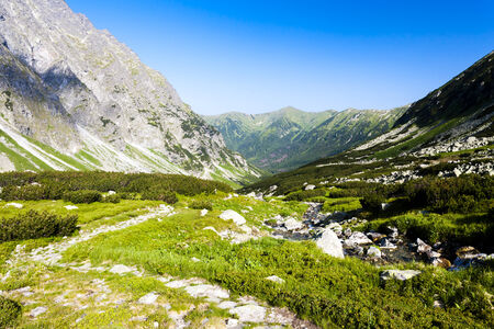tatras tatry: Hlinska Valley, Vysoke Tatry (High Tatras), Slovakia Stock Photo