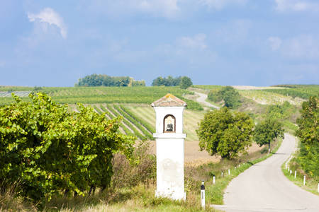 torture: Gods torture with vineyard, Southern Moravia, Czech Republic