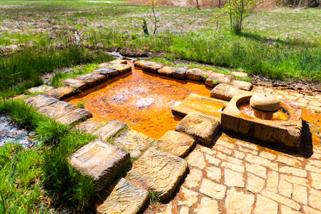 turf bog: Emperors spring, nature reserve called Soos, Czech Republic
