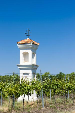 torture: Gods torture with vineyard, Palava, Czech Republic