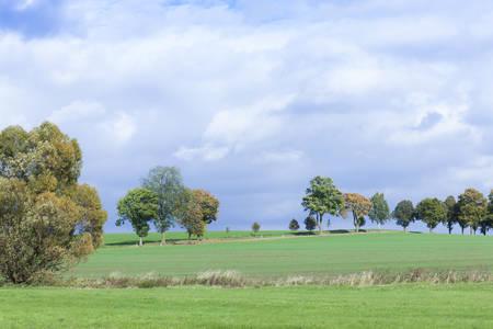 stillness: autumnal landscape