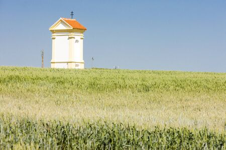 southern moravia: Gods torture with grain, Southern Moravia, Czech Republic