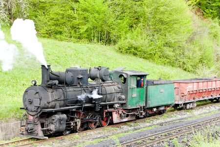 narrow gauge railway: Narrow gauge railway, Banovici, Bosnia and Hercegovina