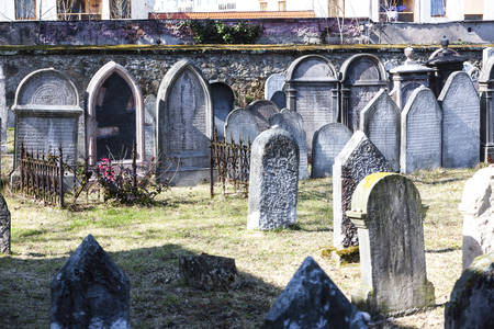 jewish: Jewish cemetery, Hermanuv Mestec, Czech Republic