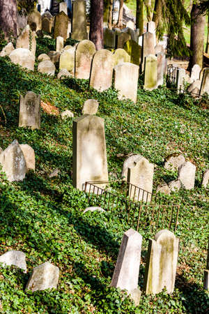 czech republic: Jewish Cemetery, Trebic, Czech Republic