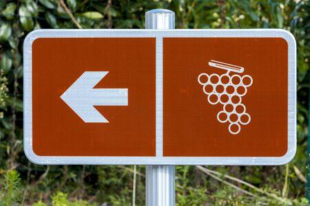 vins: wine route, Beaujolais, Rhone-Alpes, France