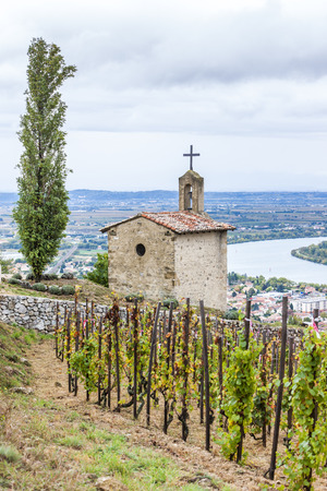 christopher: grand cru vineyard and Chapel of St. Christopher, L�Hermitage, Rhone-Alpes, France Stock Photo