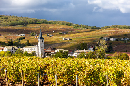 vineyards: Chenas with vineyard, Beaujolais, Rhone-Alpes, France Stock Photo