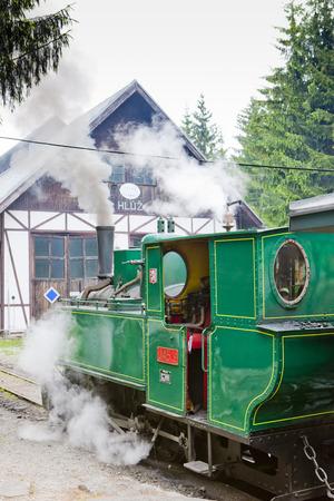 logging railroads: locomotiva a vapore, Museo del villaggio di Kysuce, Vychylovka, Slovacchia