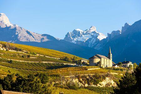 valais: vineyards below church at Conthey, Sion region, canton Valais, Switzerland