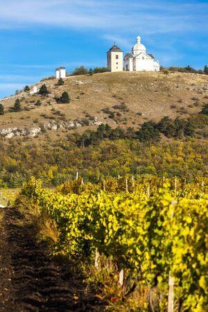 calvary: Calvary of Mikulov with autumnal vineyard, Czech Republic
