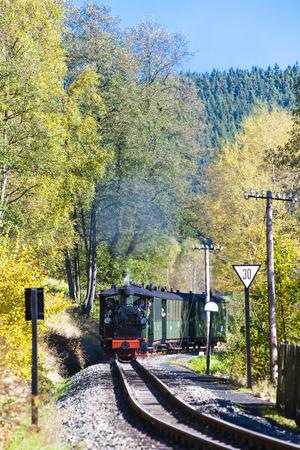 narrow gauge railroad: steam train, Steinbach - Johstadt, Germany