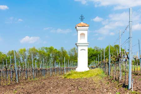 torture: Gods torture with vineyard near Palava, Czech Republic Stock Photo