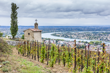 rhone: grand cru vineyard and Chapel of St. Christopher, L´Hermitage, Rhone-Alpes, France