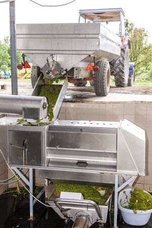 farm implements: wine harvest, Southern Moravia, Czech Republic