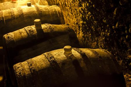 viniculture: wine cellar, Czech Republic