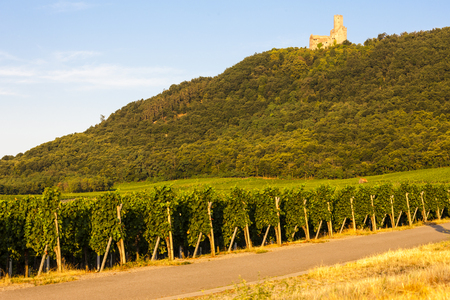 alsace: castle Ortenbourg, Alsace, France