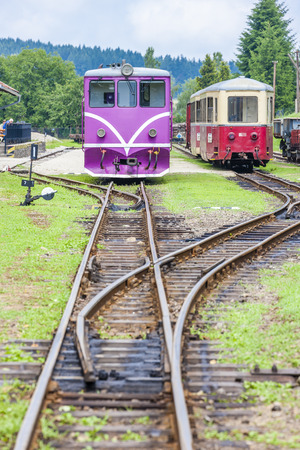 narrow gauge railroad: narrow gauge railway, Nova Bystrice, Czech Republic