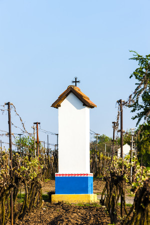 torture: Gods torture with vineyard near Nechory, Czech Republic