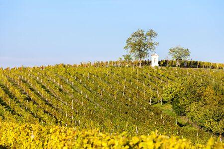 Gods torture with autumnal vineyard, Modre Hory, Southern Moravia, Czech Republic