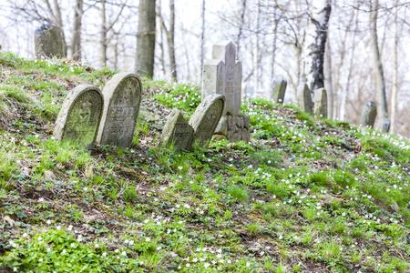 jewish: Jewish cemetery, Batelov, Czech Republic