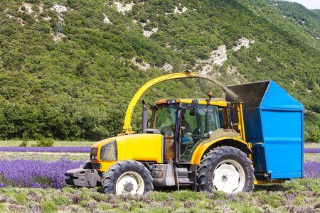 farm implements: lavender harvest, Rhone-Alpes, France