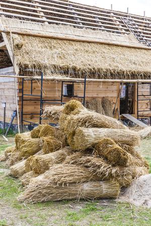 ethnographic: Kaszubski ethnographic park in Wdzydzki Park Krajobrazowy, Pomerania, Poland Stock Photo