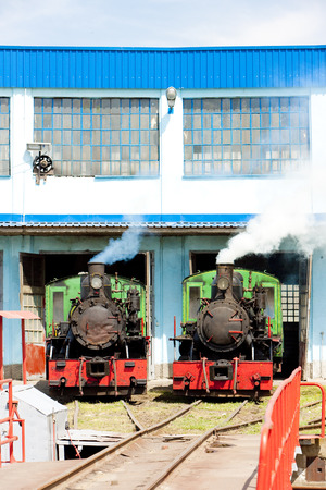 steam traction: steam locomotives in depot, Kostolac, Serbia