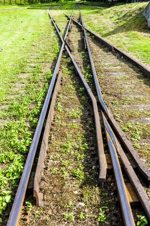 narrow gauge railroad: the crossing of normal and narrow gauge, Elk, Warmian-Masurian Voivodeship, Poland