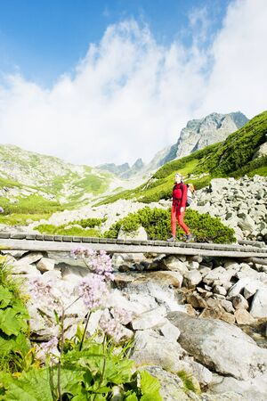 tatras tatry: woman backpacker in Great Cold Valley, Vysoke Tatry (High Tatras), Slovakia Stock Photo