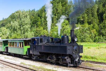 narrow gauge railroad: steam train, Lunz am See, Lower Austria, Austria