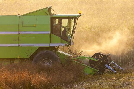 agricultural implements: grain harvest