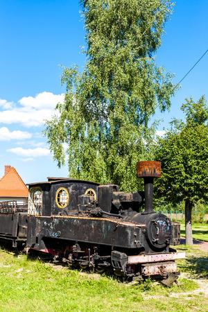 narrow gauge railroads: forest railway, Hajnowka, Podlaskie Voivodeship, Poland