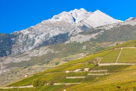 valais: vineyards in Sion region, canton Valais, Switzerland Stock Photo