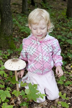 mushroom picking: mushroom picking little girl in forest Stock Photo