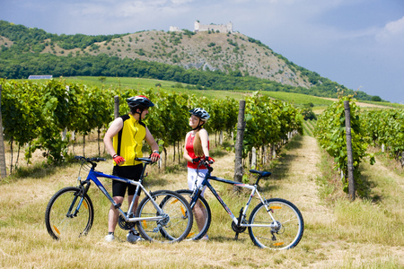 bikers, ruins of Devicky castle with vineyard, Czech Republic