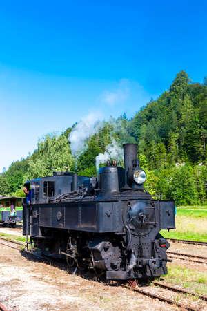 narrow gauge railroad: steam locomotive, Lunz am See, Lower Austria, Austria