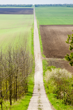 southern moravia: spring landscape with fields in Southern Moravia, Czech Republic Stock Photo