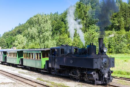 narrow gauge railroads: steam train, Lunz am See, Lower Austria, Austria