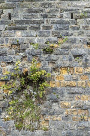Wall near Sauris di sotto, Friuli-Venezia Giulia, Italy Archivio Fotografico