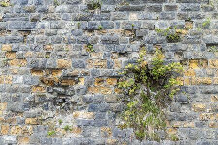 Wall near Sauris di sotto, Friuli-Venezia Giulia, Italy