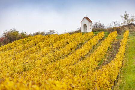 God's torture near Hnanice with autumnal vineyard, Southern Moravia, Czech Republic