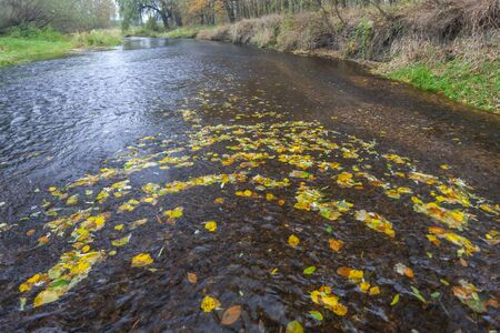 river Dyje South Moravia Czech Republic Standard-Bild - 140373491